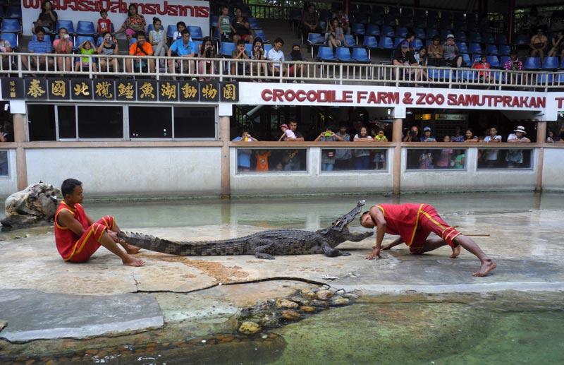 Samutprakarn Crocodile Farm & Zoo